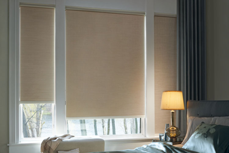 Designer Roller Shades & Screen Shades at TWG Fabrics
