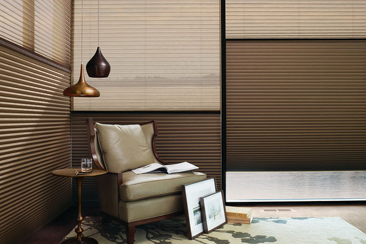 Duette Doulite Window Blinds in Middletown
